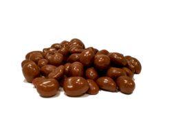 Schokolade in Nuss und Frucht